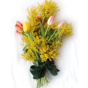 Otto Marzo (Bouquet di mimose e tulipani)
