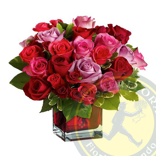 Pensiero Rosa (Rose rosse e rosa in vaso)
